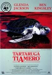 Tartaruga ti amerò