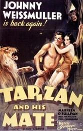 Tarzan e la compagna