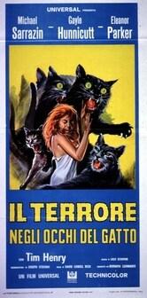 Il terrore negli occhi del gatto