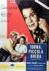 Torna, piccola Sheba