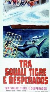 Tra squali tigre e desperados