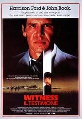 Witness - Il testimone