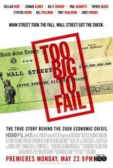 Too Big to Fail. Il crollo dei giganti