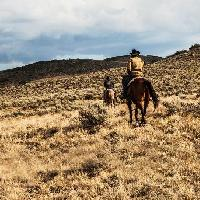 "In Serie (49) : <b>""YellowStone""</b> (stag. 1), of Fathers and Sons (ep. 8-9) : <i>""That's Not a Memory: That's a Dream""</i>."