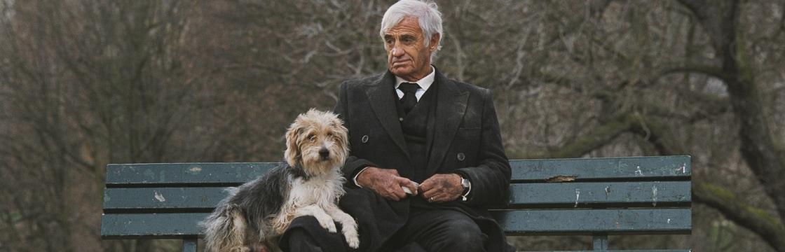 Matrimonio Uomo Cane : Un uomo e il suo cane filmtv