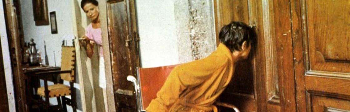 Il saprofita (1974) / AvaxHome